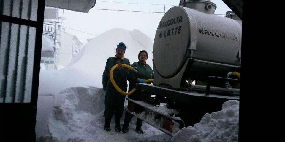 Emergenza neve | La raccolta del latte non si ferma, nemmeno tra 2 metri di neve | Caseificio Di Nucci
