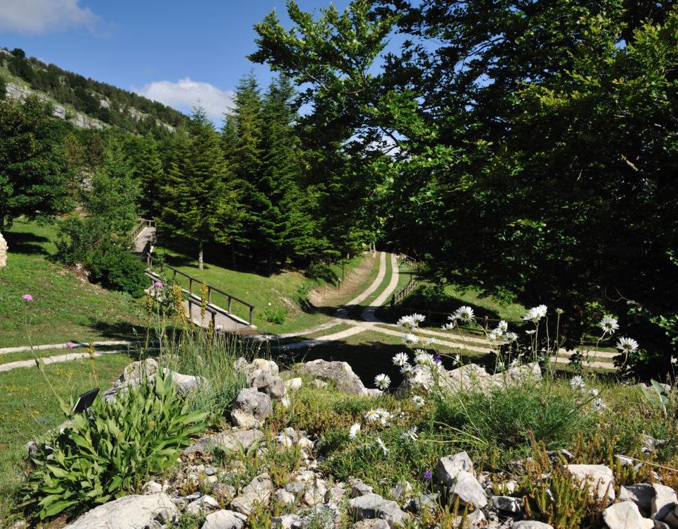 Giardino di Flora Appenninica di Capracotta